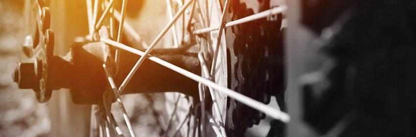 fietsverzekering online