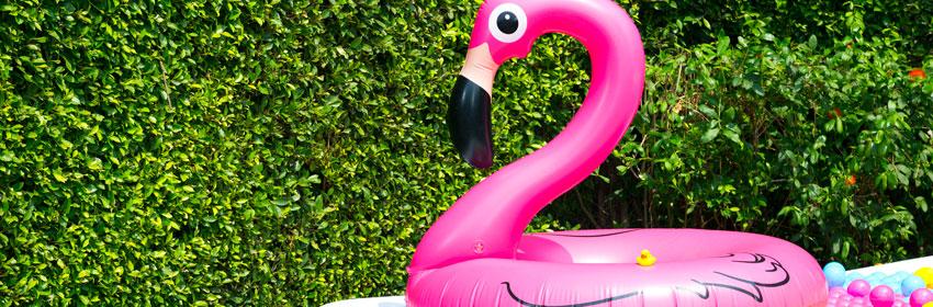 Het leukste waterspeelgoed.Roze flamingo