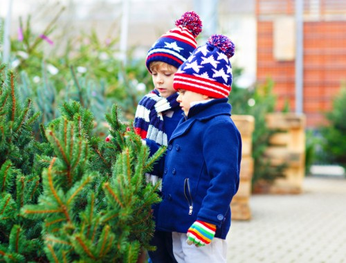 kerstboom online