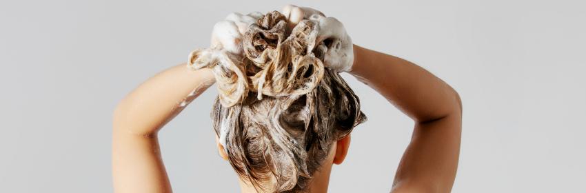 shampoo vettig haar
