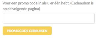 van-eyck-promocode