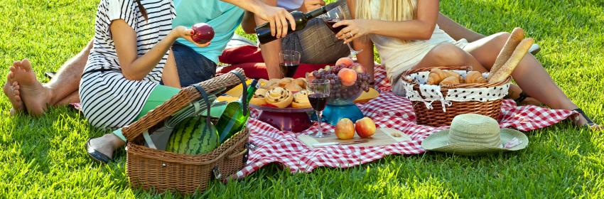 voorbereiden picknick